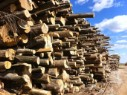 Firewood industry delivery from Mascouche for all your needs