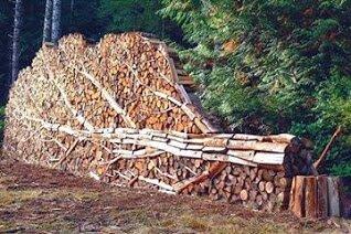 devis livraison bois de chauffage buche ecologique cordage bois nous contacter bois sec inc. Black Bedroom Furniture Sets. Home Design Ideas
