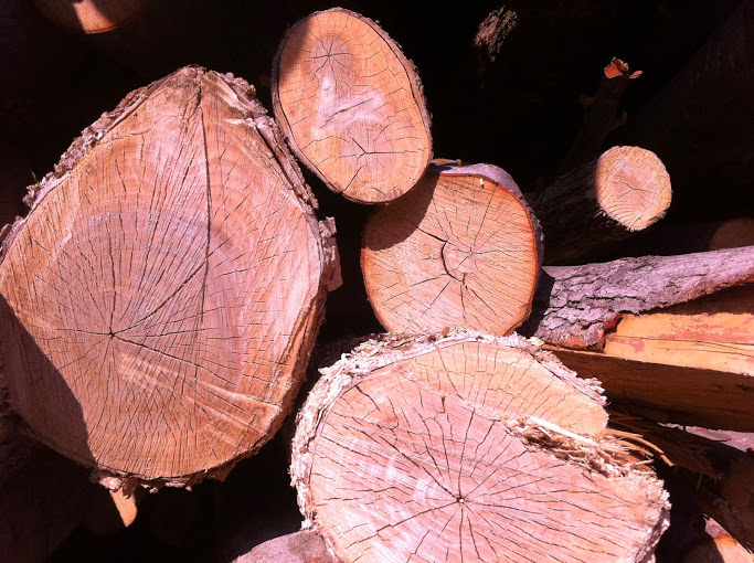 Mixed scrap wood log of variable lenght firewood Bois Sec Fraser